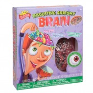 Scientific Explorer Disgusting Anatomy Kit Brain