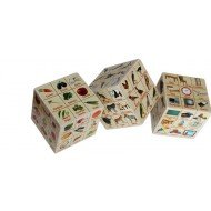 Anindita Learning Cube Advanced