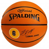Spalding LeBron James Basketball Size 7,Brick