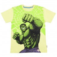 Avengers Yellow Round Neck T-Shirt AV1EBT181