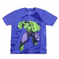 Avengers Surf Blue Round Neck T-Shirt AV1EBT183