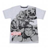Avengers Grey T-Shirt AV1EBT185