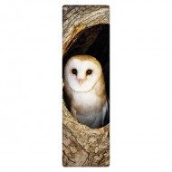 IF by Mufubu National Geographic 3D Bookmark Barn Owl