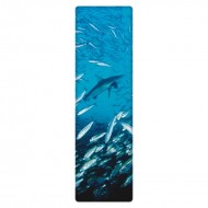 IF by Mufubu National Geographic 3D Bookmark Galapagos Shark and Salemans