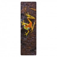 IF by Mufubu National Geographic 3D Bookmark Lemur Leaf Frog