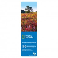 IF by Mufubu National Geographic 3D Bookmark Paintbrush, Lupine and Tickseed Flowers