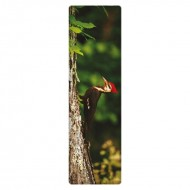IF by Mufubu National Geographic 3D Bookmark Pileated Woodpecker