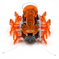 Hexbug Ant 10