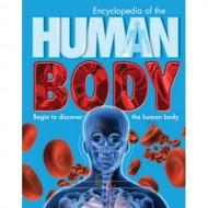 Parragon Encyclopedia Of The Human Body