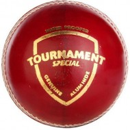 SG Tournament Special Cricket Leather Balls