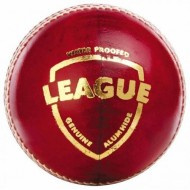 SG League Cricket Leather Balls