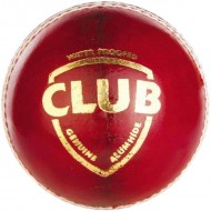 SG Club Cricket Leather Balls