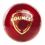 SG Bouncer Cricket Leather Balls