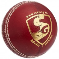 SG Seamer Cricket Leather Balls