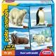 Frank Polar Animals