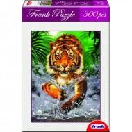 Frank Running Tiger
