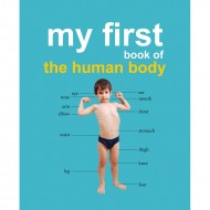 My First Book Of The Human Body Padded Board Book Om Books