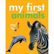 My First Book Of Animals Padded Board Book Om Books