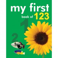 My First Book Of 123 Padded Board Book Om Books
