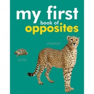 My First Book Of Opposites Padded Board Book Om Books