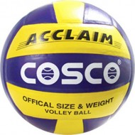 Cosco Acclaim Volleyball Size 4