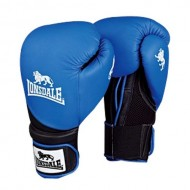 Lonsdale Club Bag Synthetic Leather Boxing Mitts
